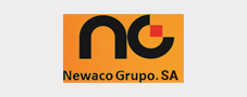 Newaco Grupo SA - ElegantJ BI - Business Intelligence Client