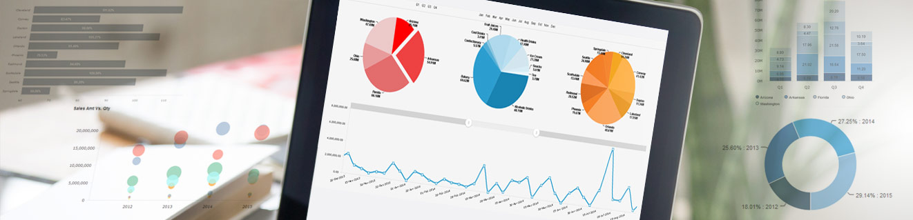 ElegantJ BI Business Intelligence and Reporting with Seamless SAP® Connectivity