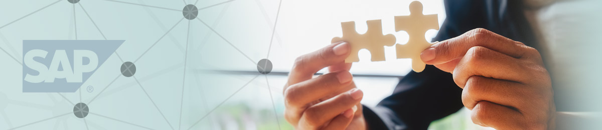 CAPITALIZE ON OUR SAP CONNECTIVITY
