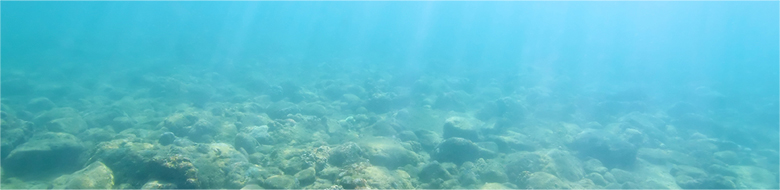 ElegantJ BI – key advantages of Deep Dive analytics
