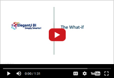 Exploring the power  of What-If analysis in ElegantJ BI