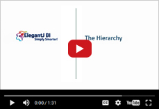 Understanding a  hierarchy for drill down and drill through in ElegantJ BI